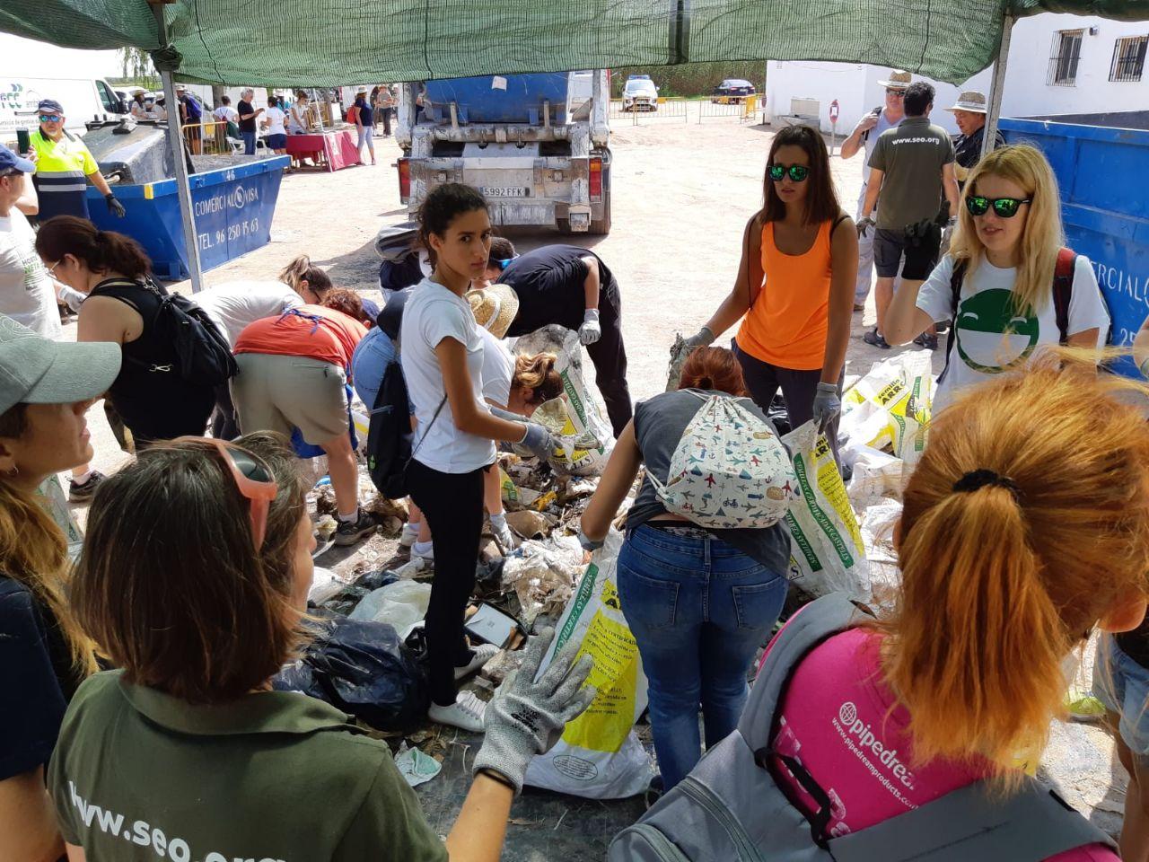"""La macrojornada de neteja retira 1.400 quilos del Parc Natural de l""""Albufera"""
