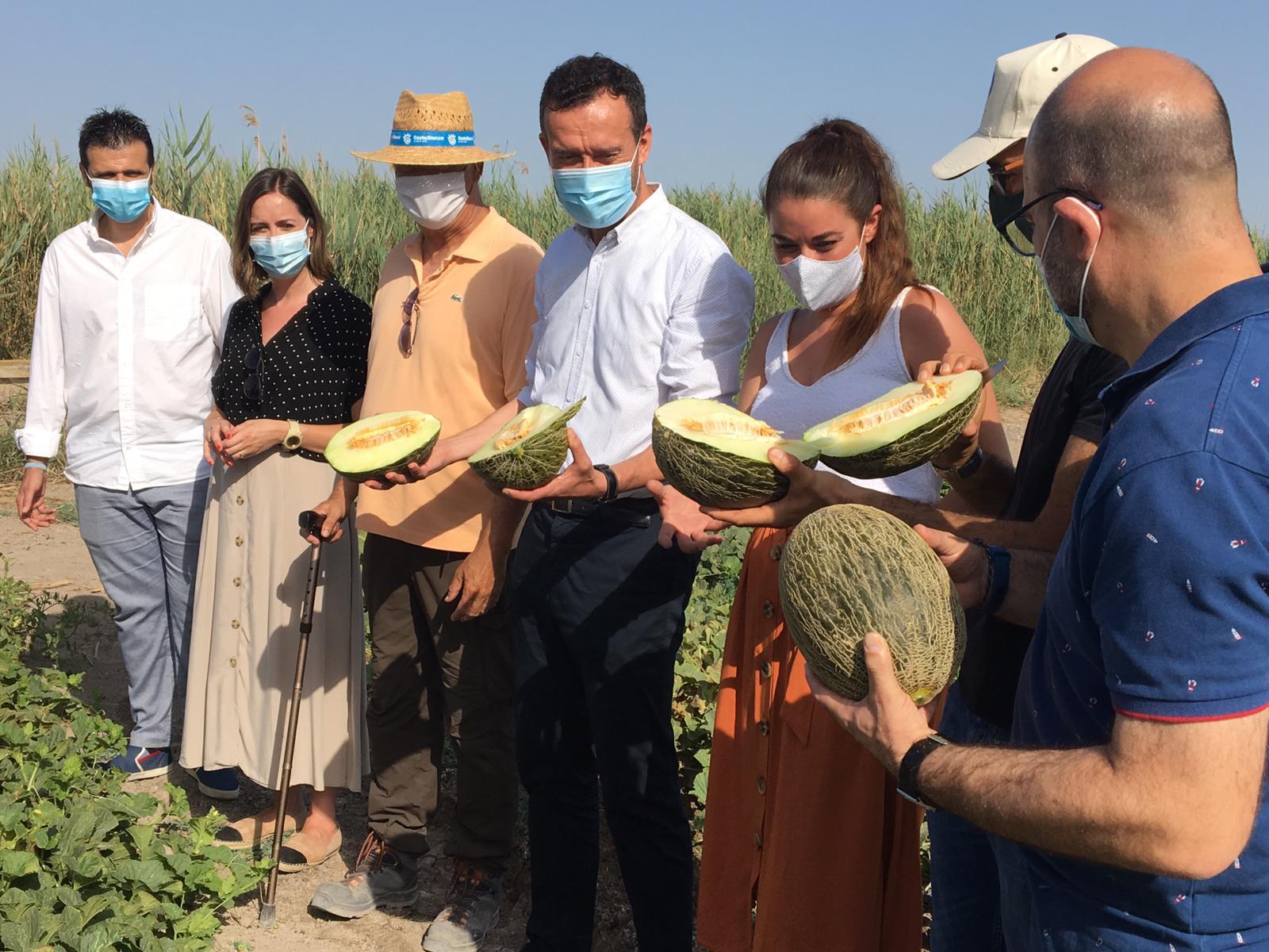 """Mireia Mollà pone en valor la importancia del melón de Carrizales como """"emblema del futuro de la agricultura por su alta calidad y producción sost..."""