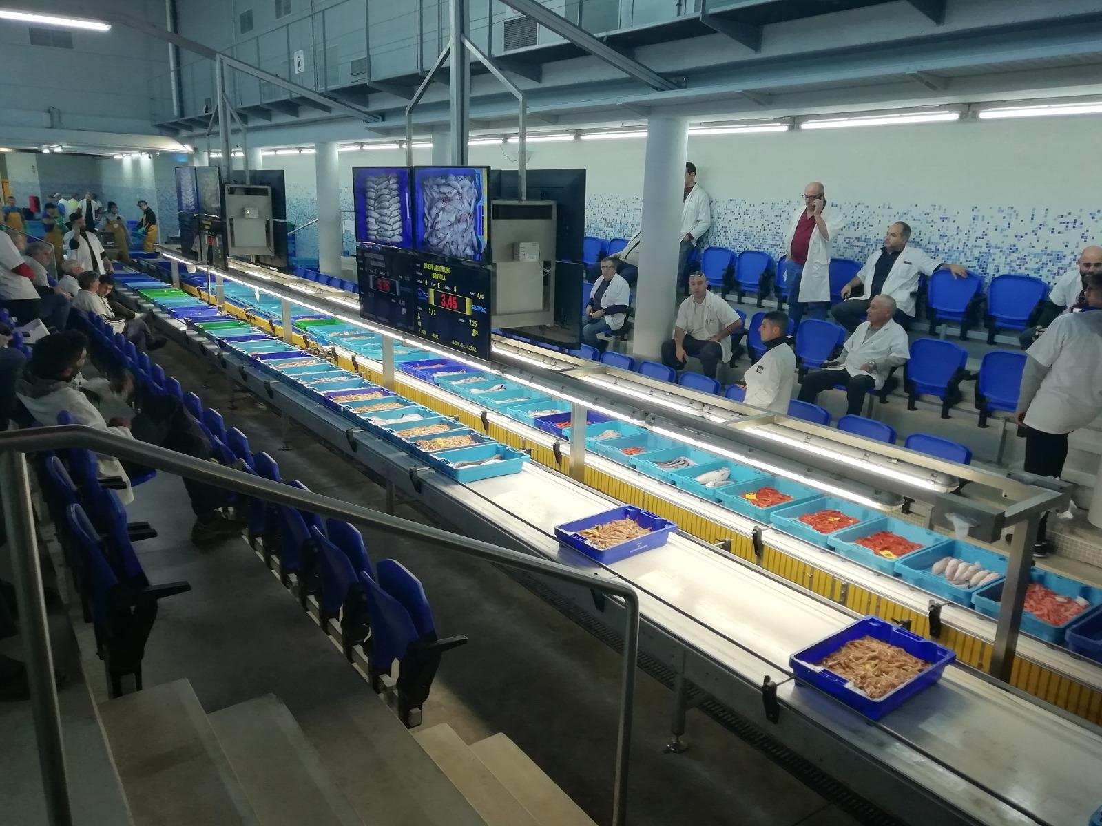 La Conselleria de Agricultura destina más de 1,5 millones de euros a la mejora de las infraestructuras de la Cofradía de Pescadores de Santa Pola