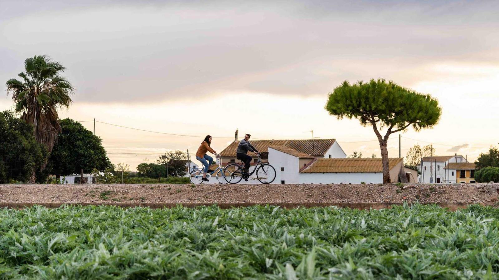 Generalitat y Ayuntamiento de València colaboran para mejorar las conexiones ciclistas metropolitanas