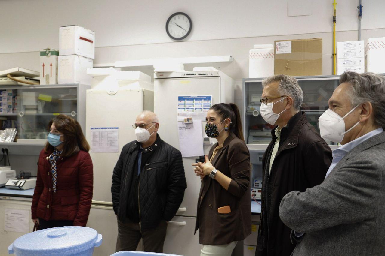 Mollà se reúne con el investigador Francis Mójica para conocer los resultados preliminares del estudio para la curación y prevención de la Xylella